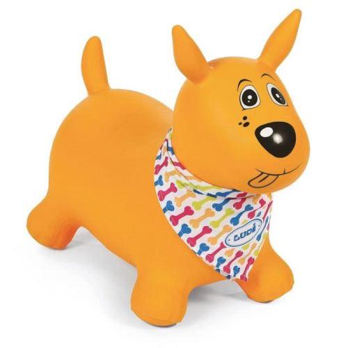 ludi-mon-chien-sauteur-jaune.jpg
