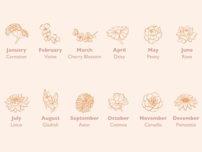 brith-flower-chart-800x600
